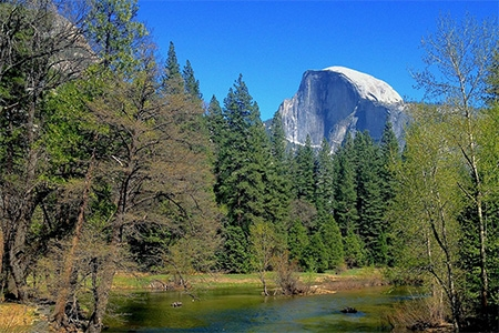 Picturesque Yosemite
